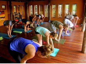 22 Days 200-Hour Yoga Teacher Training in Rivas, Nicaragua