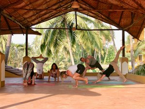 7 Day Relaxation, Wellness, and Yoga Holiday in Goa