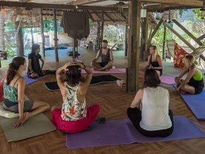 10 Tage Natur Detox Urlaub in Palawan, Philippinen