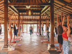 8 Days Meditation and Yoga Retreat Bali