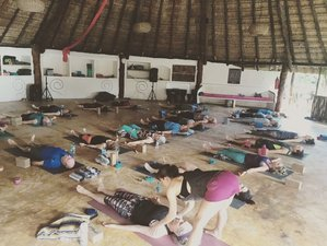 7 Days Yoga Retreat Tulum, Mexico