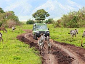 4 Days Budget Camping Safari Tour in Tanzania