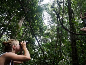 3 Day Jungle Adventure Wildlife Holiday in Tambopata National Reserve and Sandoval Lake, Peru
