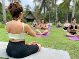 23 Day 200-Hour Hatha Vinyasa Yoga Teacher Training Course in Palomino