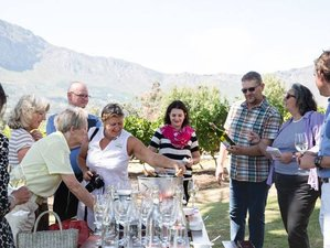 6 Days Winelands and Wildlife Safari in South Africa