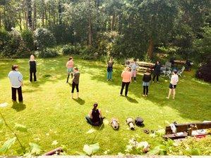 3-Daags Diepgaand Yogaweekend 'Breathe, Move and Talk' in de Natuur in Bonheiden