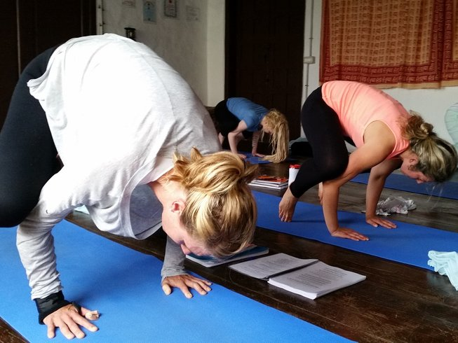 28 Days 200-Hour Yoga Teacher Training in Tenerife, Spain