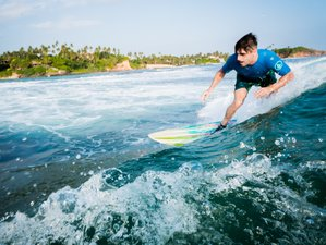 8 Days Surf Relax with Freedom Surf School in Weligama, Sri Lanka