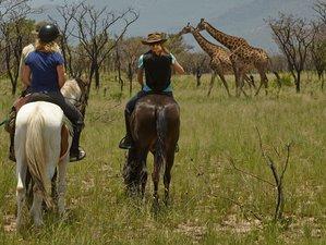 6 Days Big 5 Horseback Safari, South Africa
