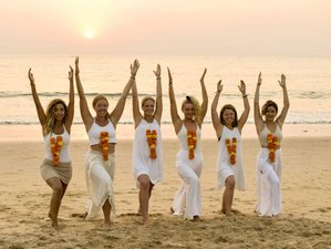 26 Days 200-Hour Multi Style Yoga Teacher Training in Goa, India