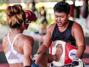 8 Day Muay Thai Training with Yoga in Thalang, Phuket