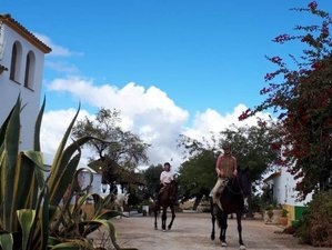 5 Day Ride, Hike and Bike Yoga Holiday, Sportive and Relaxing Getaway with Horses in Andalusia