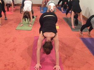 9 Days Ashtanga Vinyasa Yoga and Meditation Retreat in a Renaissance Palazzo in Venice, Italy
