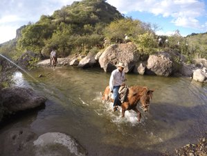 7 Day Life Changing Pack Trip in San Miguel de Allende, Guanajuato