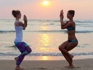 200-Hour Hatha Vinyasa Yoga Teacher Training Phuket Thailand