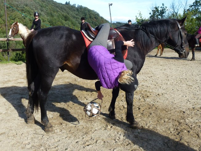 8 Days the Original Horse Riding Holiday in Asprieres, France
