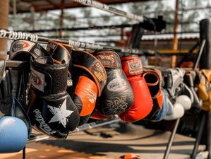 14 Day Boxing and Muay Thai Camp in the Ancient City of Phitsanoluk