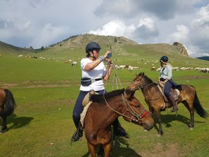 8 Day Express Horse Riding Tour in Mongolia