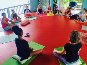 6 Days Catalyzer Meditation and Yoga Retreat in Hawaii
