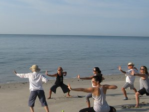 5 Days Family Tai Chi and Yoga Retreat in Panama