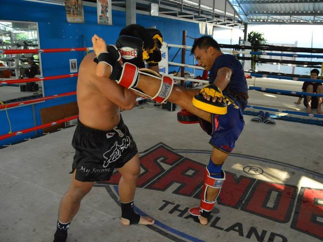 14 Days Muay Thai Training in Thailand
