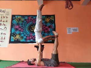 26 Days 200-Hour Exclusive Yoga Teacher Training in Dharamsala, India