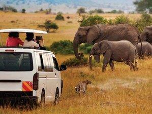 3 Days Maasai Mara Group Joining Camping Safari with Daily Departures in Kenya