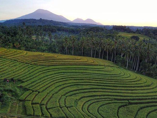 5 Days Meditation and Yoga Retreats in Bali, Indonesia