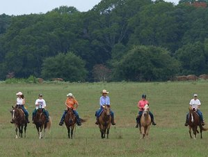 4 Days Dude Ranch Adventure in Cat Spring, Texas
