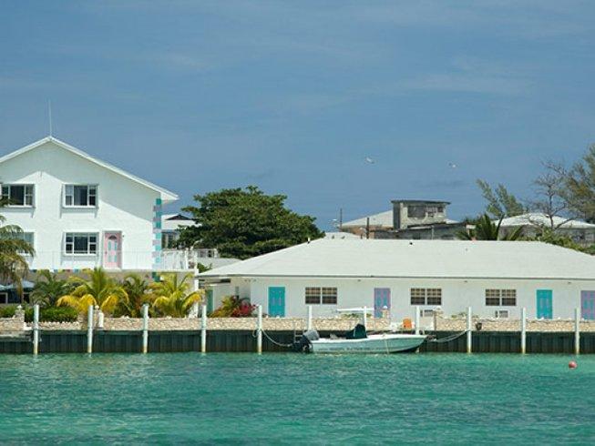 7 Days Dolphin Watching and Yoga Retreat in Bimini, the Bahamas