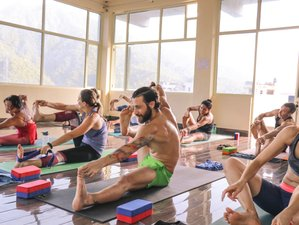 28 Days 200-Hour Vinyasa Yoga Teacher Training Rishikesh, India