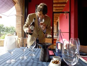 10 Days Wine and Food Tours Spain