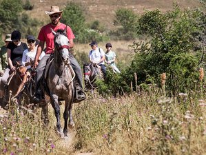 5 Days Shepherd's Trail Horse Riding Tour in Macedonia
