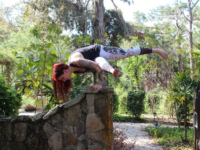 15 Tage 200-Stunden Hatha mit Aerial Zertifikat Yogalehrer Ausbildung in Florida, USA
