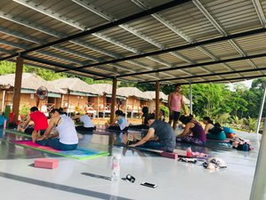 7 Day Freedom Blaze Yoga Retreat in Kudat, Sabah