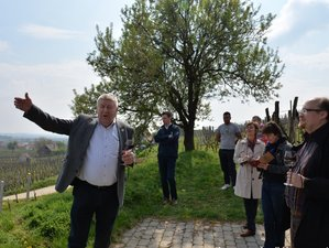 2 Day The Big Four Villany Wine Region Tour in the Southern Hungary