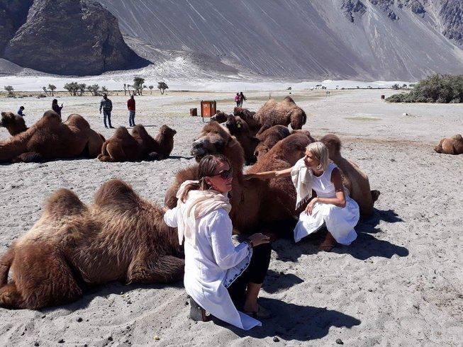 15 Tage Meditation und Yoga Retreat im Himalaya, Indien