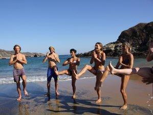 7 jours en stage d'acro yoga danse et mouvements dans l'eau à Mazunte, Mexique