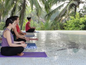 8 Days Beginner & Intermediate Yoga India