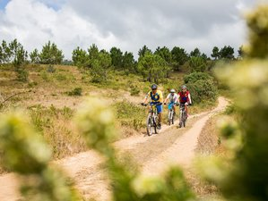 8 Days Mountain Biking and Yoga Holiday in Lisboa, Portugal