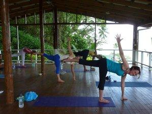 8 Days Tread Lighter on the Earth Yoga Retreat in Savusavu, Fiji