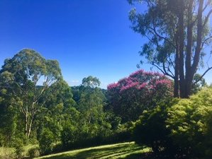 3 Day Relaxing Meditation and Silent Retreat in Maleny, Queensland