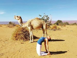 8 Day Glorious Sound Healing Bowl Massage, Dance, and Yoga Holiday in The Deserts of Morocco