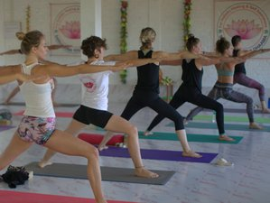 28 Days 200-Hour  Dual style Yoga Teacher Training in Goa Beach, India