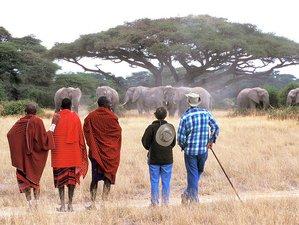 13 Days Hiking and Wildlife Safari in Tanzania