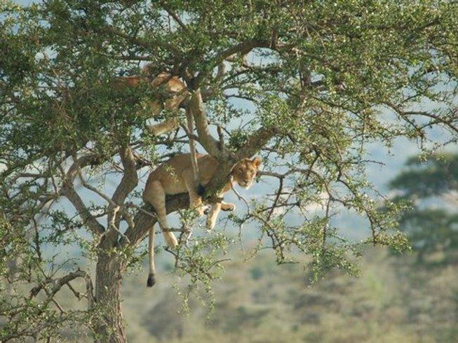 5 Days Cultural and Classic Tanzania Safari