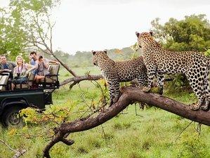 5 Day Wildlife Galore Tanzania Safari