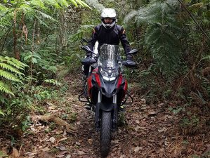 8 Day Northern Circle Guided Motorcycle Tour in Malaysia