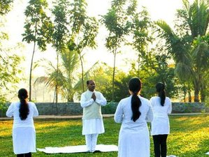11 Days Yoga Retreat for Stress and Anxiety Emotional Cleansing with Ayurveda in Maharashtra, India