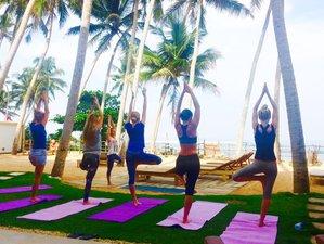7 días de yoga y Ayurveda en Akurala, Sri Lanka